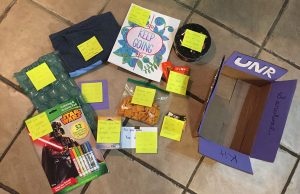 Diy Gift Guide College Care Package The Roar